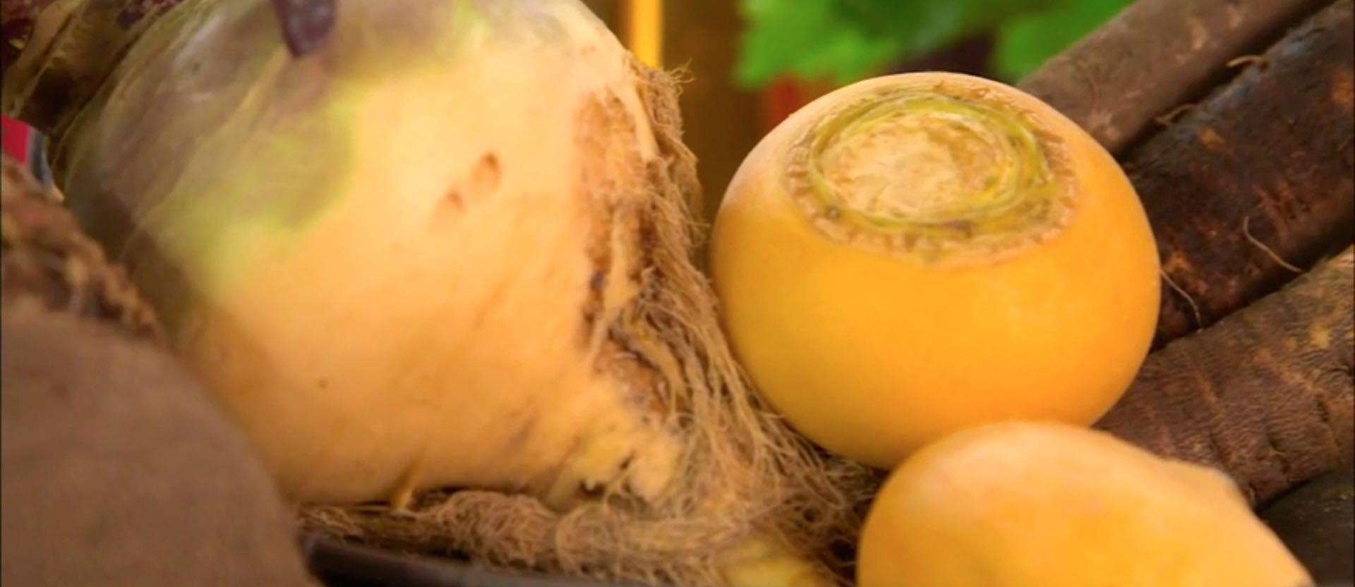 C'est de saison : les légumes anciens - Laurent Mariotte